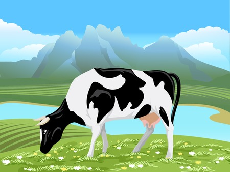 non cultivated: Vector cow and rural meadow landscape