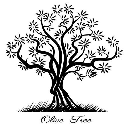 arboles blanco y negro: Silueta del �rbol de oliva. Sketch madera pintado l�neas negras. Ilustraci�n vectorial