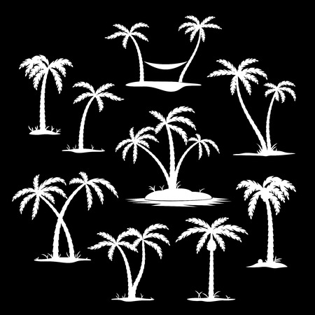 palmtrees: Set of coconut trees white silhouette icons on the black background. Vector illustration