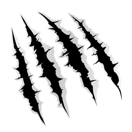 garra: Una ilustración de un monstruo garra o rasguñar la mano o rasgar a través de fondo blanco