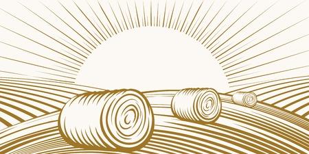 Paysage rural avec des meules de foin sur les champs Banque d'images - 35391423