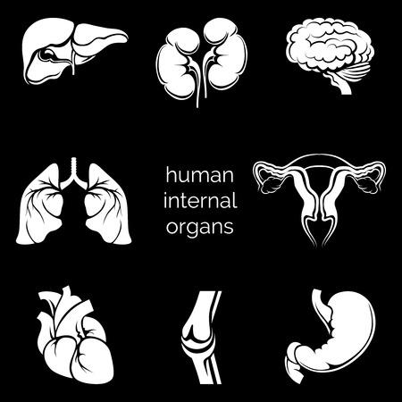entrails: Internal human organs silhouettes Illustration