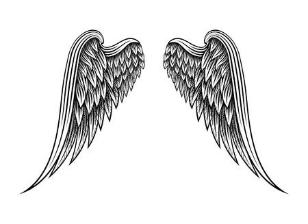 Hand drawn angel wings  イラスト・ベクター素材