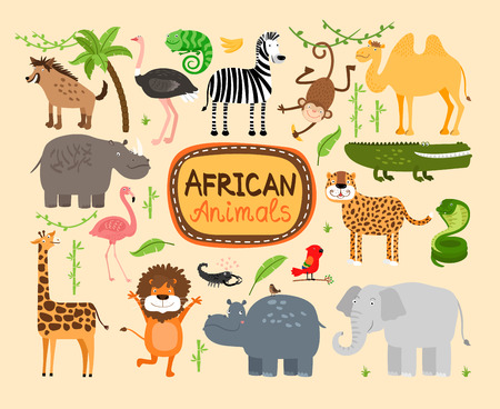 woods: Vector african animals Illustration