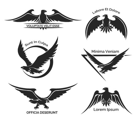 hawk: Set of eagle logo Illustration
