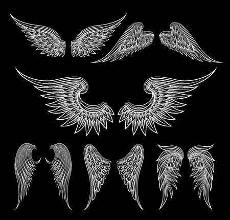Witte vleugels op een zwarte achtergrond Stock Illustratie