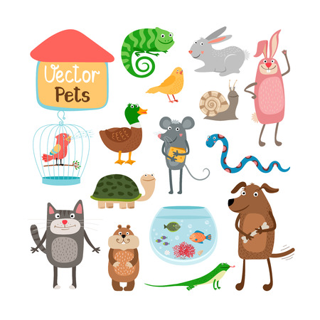 hand drawn cartoon: Vector pets