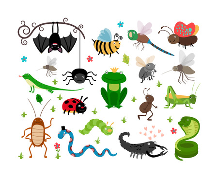 cartoon bug: Cute vector insects, reptiles. Bee, grasshopper, lizard and snake Illustration