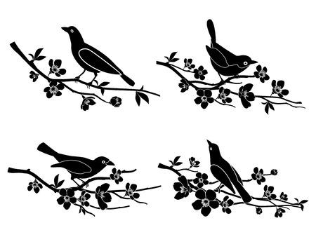 arbol pájaros: Pájaros en ramas. Siluetas del vector Vectores