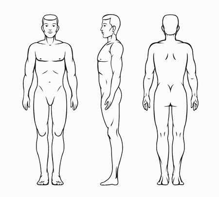 nude man: Male body vector illustration Illustration