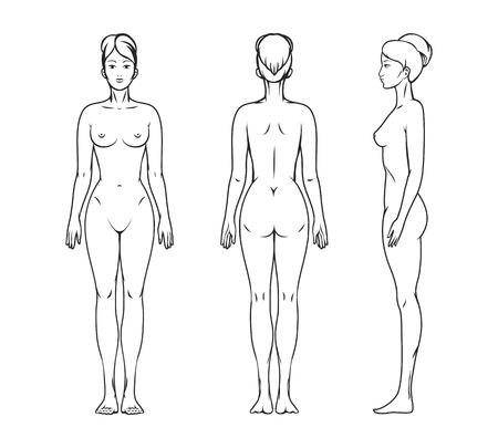 girls naked: Женское тело Иллюстрация