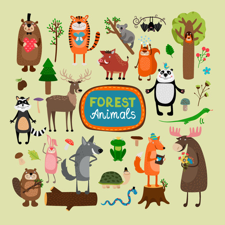 origen animal: Animales del bosque vectorial