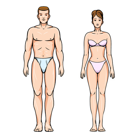 body slim: Man and woman healthy body figures
