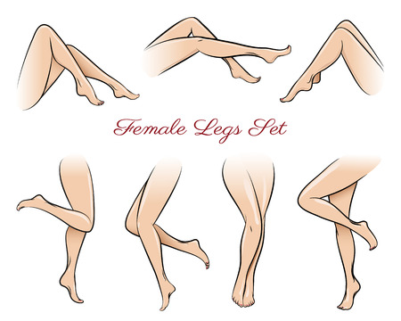Female legs set. Body beautiful, sexy beauty fashion, sexual naked, attractive nude. Vector illustration