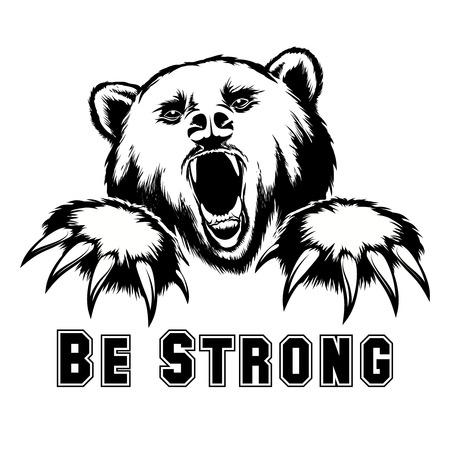 garra: Vector oso enojado cabeza. Grizzly enojado, poderoso depredador, la fuerza y ??la vida silvestre, la garra y mamíferos