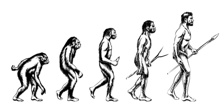 australopithecus: Human evolution. Monkey and australopithecus, neanderthal and animal, vector illustration