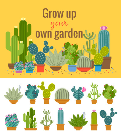 Home cactus garden poster. Green plant, flower and nature, pot and set of houseplant, vector illustration
