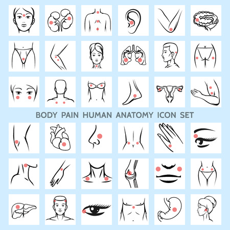 human eye: Body pain human anatomy icons. Medical eye brain trauma urinary arm rheumatism physiology leg neck headache organ backache. Vector illustration