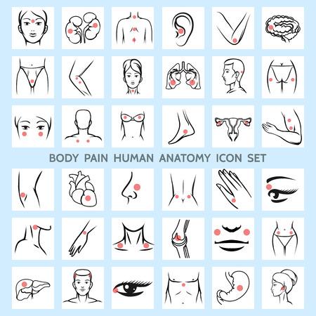 silueta humana: Dolor de cuerpo iconos anatomía humana. Cerebro ojo Médico trauma brazo fisiología reumatismo cuello pierna dolor de espalda dolor de cabeza órgano urinario. Ilustración vectorial Vectores