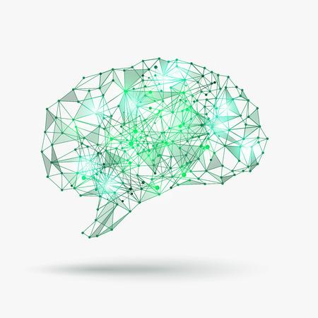 낮은 폴리 인간의 두뇌. 지식과 마음, 개념 창의력. 벡터 일러스트 레이 션