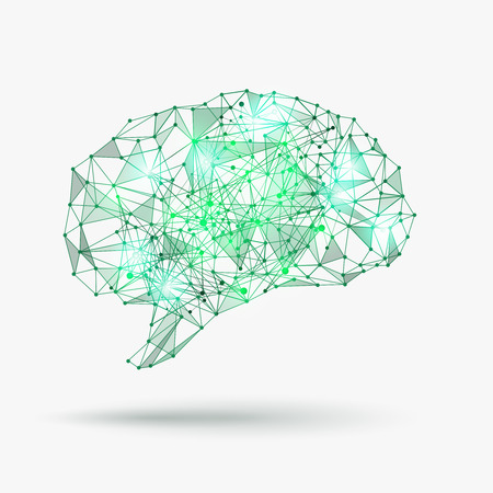 inteligencia: Bajo poli cerebro humano. El conocimiento y la mente, el concepto de la creatividad. Ilustración vectorial Vectores