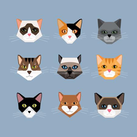 Set van katten hoofden in vlakke stijl. Geconfronteerd kitten, snorharen en oren, snuit en wol. Vector illustratie