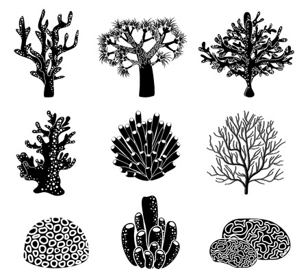 reef: Vector set of black coral silhouettes. Underwater life, reef and wildlife, element natural illustration Illustration