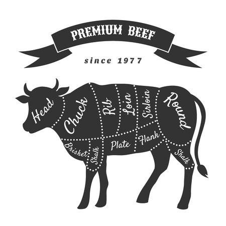 flank: Beef cuts for butcher shop poster. Beef and brisket, shank and flank, hank and shalk, plate and loin, vector illustration