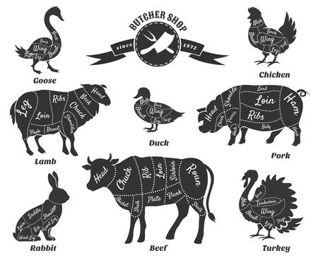 black breast: Diagrams for butcher shop. Animal silhouette, beef and cow, turkey and goose, pork and sheep. Vector illustration