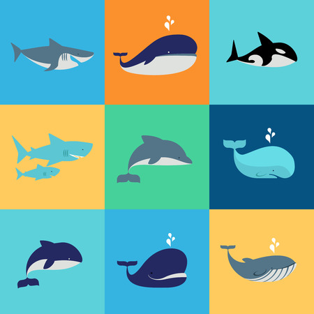 Vector set of whale, dolphin and shark icons. Grampus and fountain, underwater and nature