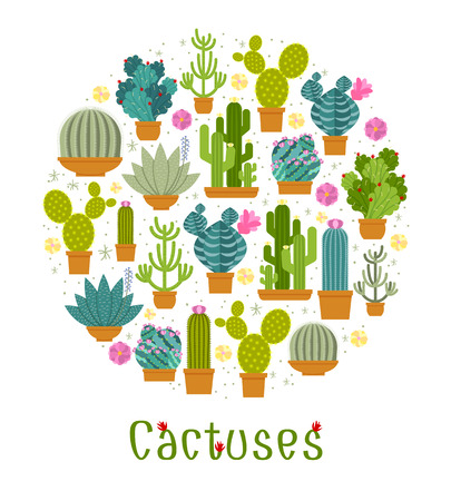 spiny: Cactus label. Spiny and barb, blossom and flowerpot, mexican and tropical. Vector illustration Illustration