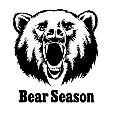 oso caricatura: Dibujado a mano del vector del oso del rugido. Dise�o de la camiseta. Grizzly salvaje, jefe ejemplo animal enojado Vectores