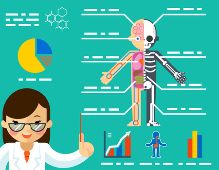 Medical concept. Doctor woman showing anatomy. Science healthcare, human body, education biology skeleton, vector illustration Illustration