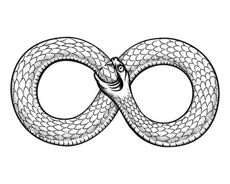 Serpiente enroscada en el anillo infinito. Ouroboros que devora su propia cola. Diseño del tatuaje de la serpiente, masónico brujería, ilustración vectorial