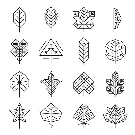 leaf line: Hipster geometric thin line leaves for logos and emblems. Nature elegance, fashion graceful contour, leaf organic floral. Vector illustration Illustration