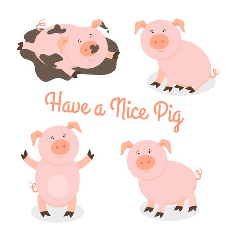 mammal: Cute happy cartoon pigs vector set. Mammal and funny pet, vector illustration