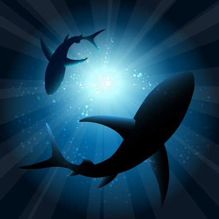 bright sun: Sharks under water. Fish in ocean, animal nature life, swimming wildlife, vector illustration