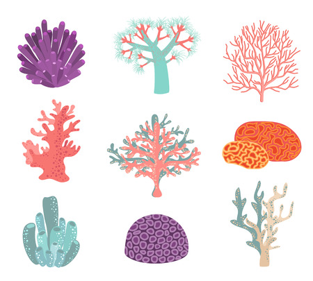 coral reef underwater: Set of underwater color coral icons. Reef nature marine, aquatic vector illustration Illustration