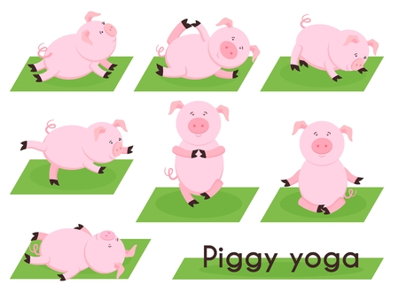 piglet: Pig yoga. Cute pig in different yoga poses. Animal sport, meditation piglet, piggy farming, position and exercise, relax and balance, vector illustration