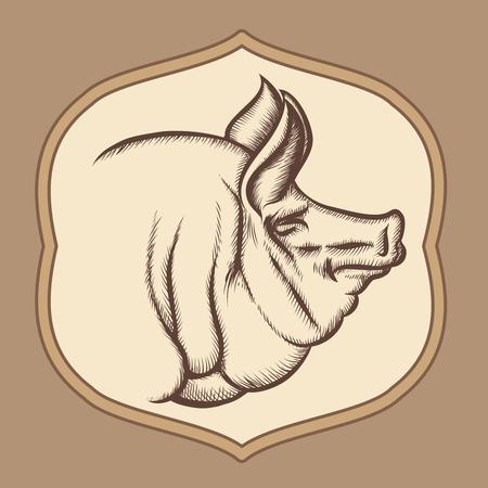Pig head in engraving vector style. Emblem or badge restaurant, muzzle and pork illustration Ilustração