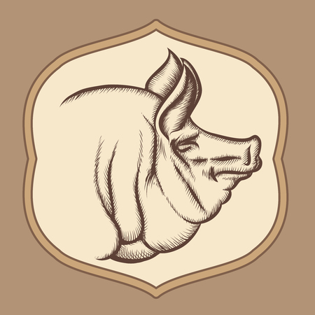 Pig head in engraving vector style. Emblem or badge restaurant, muzzle and pork illustration Illustration
