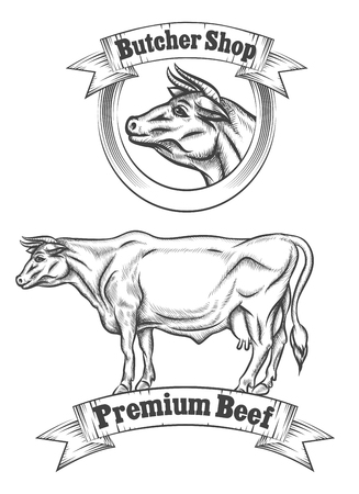 grill meat: Premium beef meat vector label, butcher emblems or grill BBQ logo. Animal badge, cow farm, vector illustration
