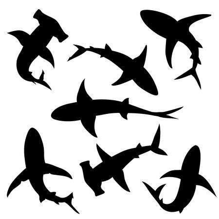 Shark vector silhouettes set. Sea fish, animal swimming, fauna illustration Vettoriali