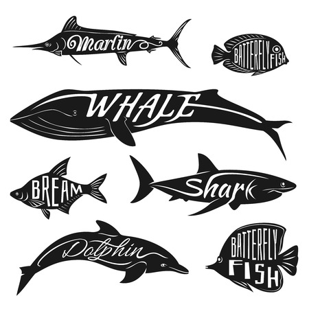 predators: Retro, vintage fish with names. tattoo set bream and dolphin, whale and batterfly, marlin illustration