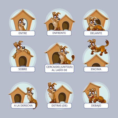 Cartoon dog different poses. Spanish prepositions place. Vector illustration preschool kids. Position domestic place mammal, breed or pedigree puppy Illustration