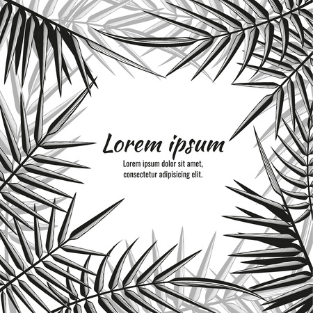 summer nature: Abstract vector exotic background with tropical palm leaves. Leaf and nature summer tropical illustration Illustration