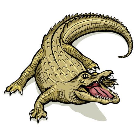 Cartoon green crocodile. Animal reptile, predator with open mouth, vector illustration Vettoriali