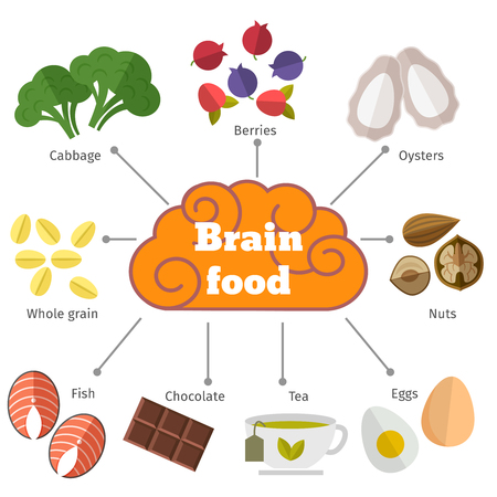 Brain food flat infographics. Berries and cabbage, oysters and grain, nuts and egg, fish and chocolate illustration