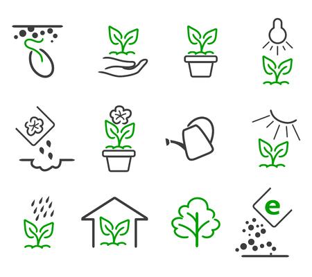 라인 새싹과 식물 성장 아이콘을 설정합니다. 선형 자연 잎, 나무, 정원, 꽃, 유기 정원, 에코 식물, 그림을 성장