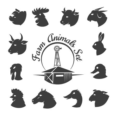 carnero: Granja iconos de carne de animales. Gallo y caballo, conejo y cabra, la agricultura pájaro, carnero y la polla, el conejito y el toro, la ilustración Vectores